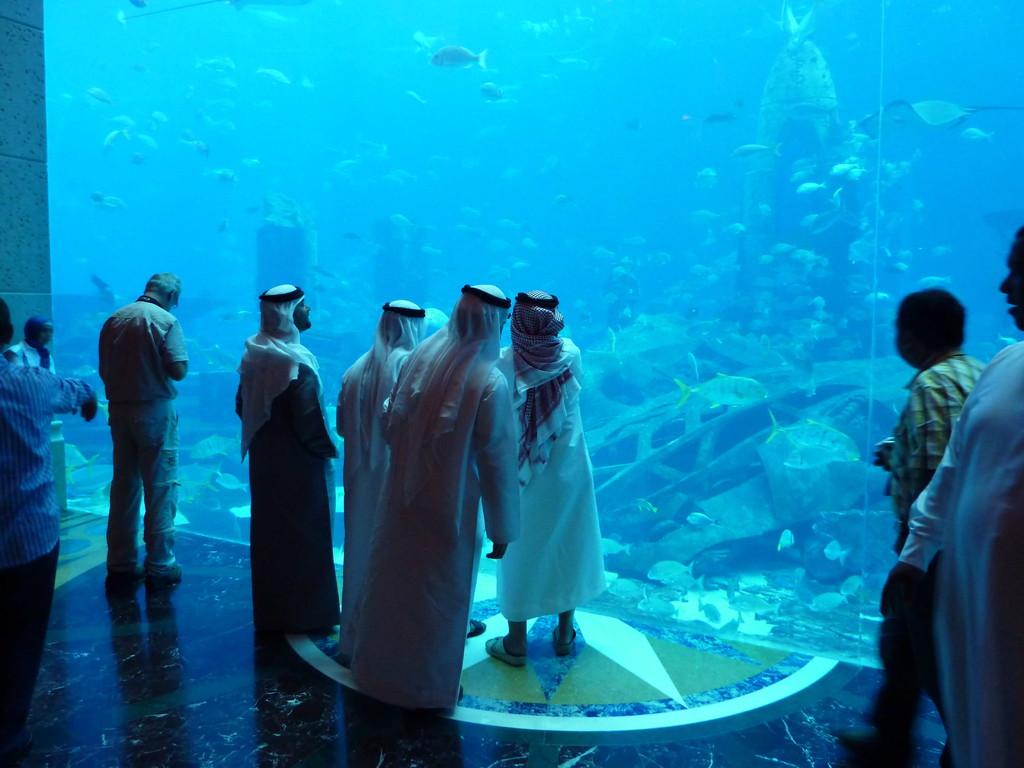 1.Tag - Dubai/Palme - Hotel Atlantis /Mall - Aquarium