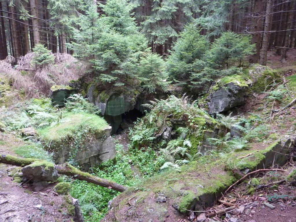 4. Tag - Hürtgenwald/ehm. Bunkenanlage