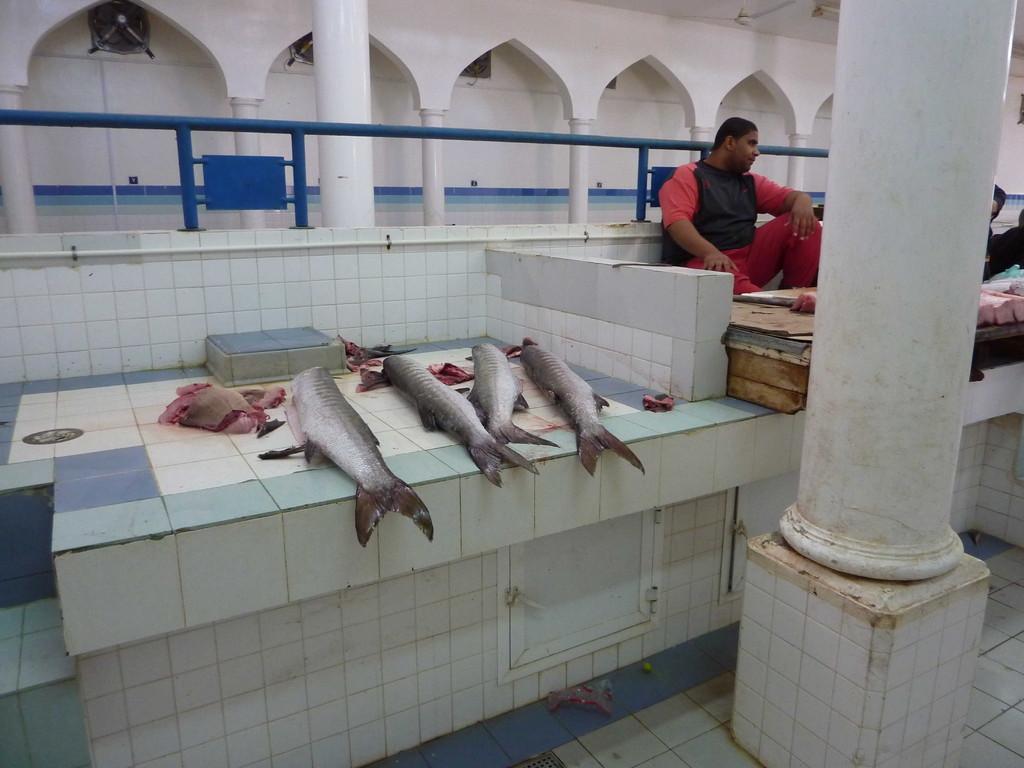 3. Tag - Nizwa/  Vieh- Ost- u. Fischmarkt