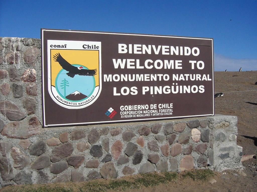 Stop in Punte Arenas - Isla Magdalena