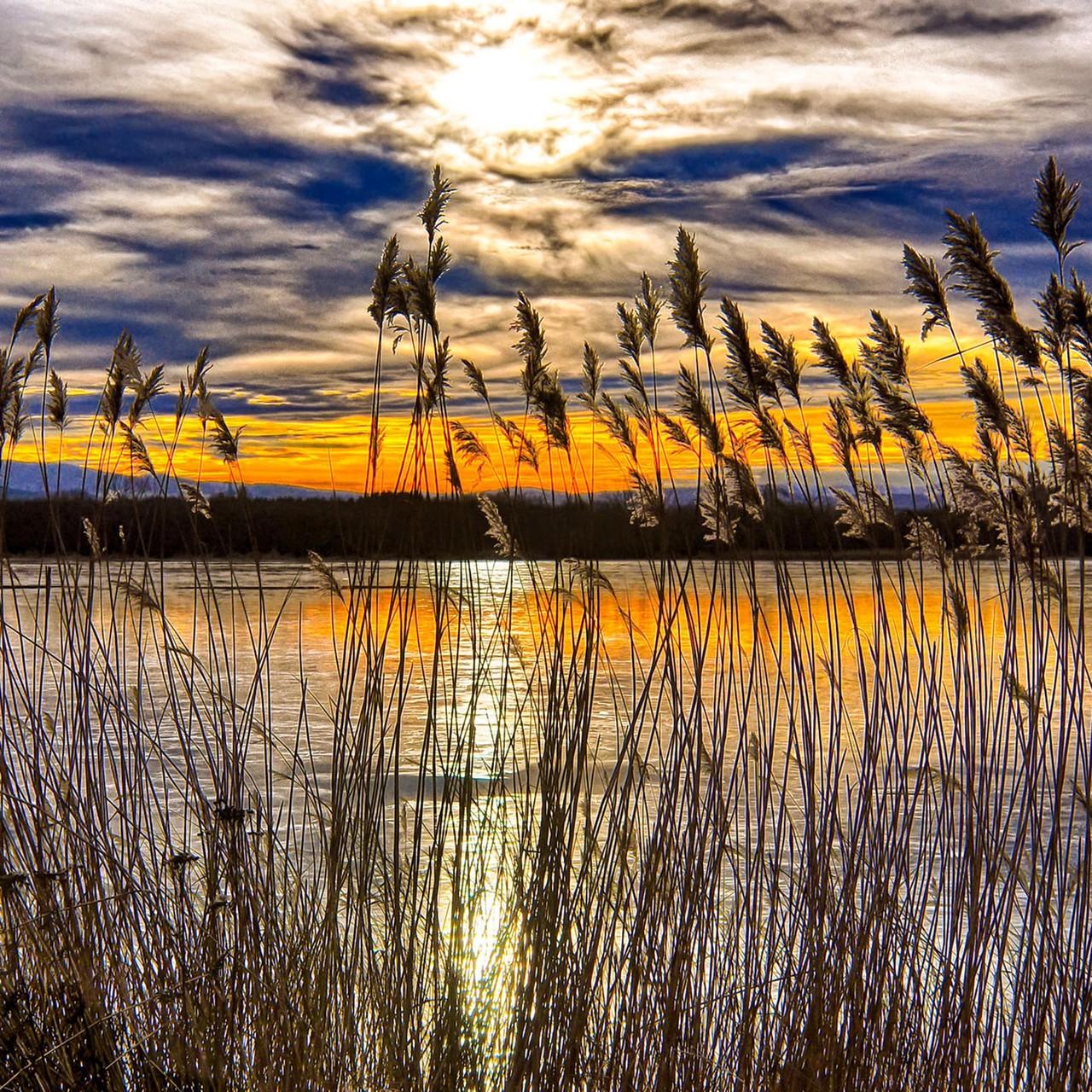 Sonnenuntergang, Teichwanderweg Waldreichs, NÖ