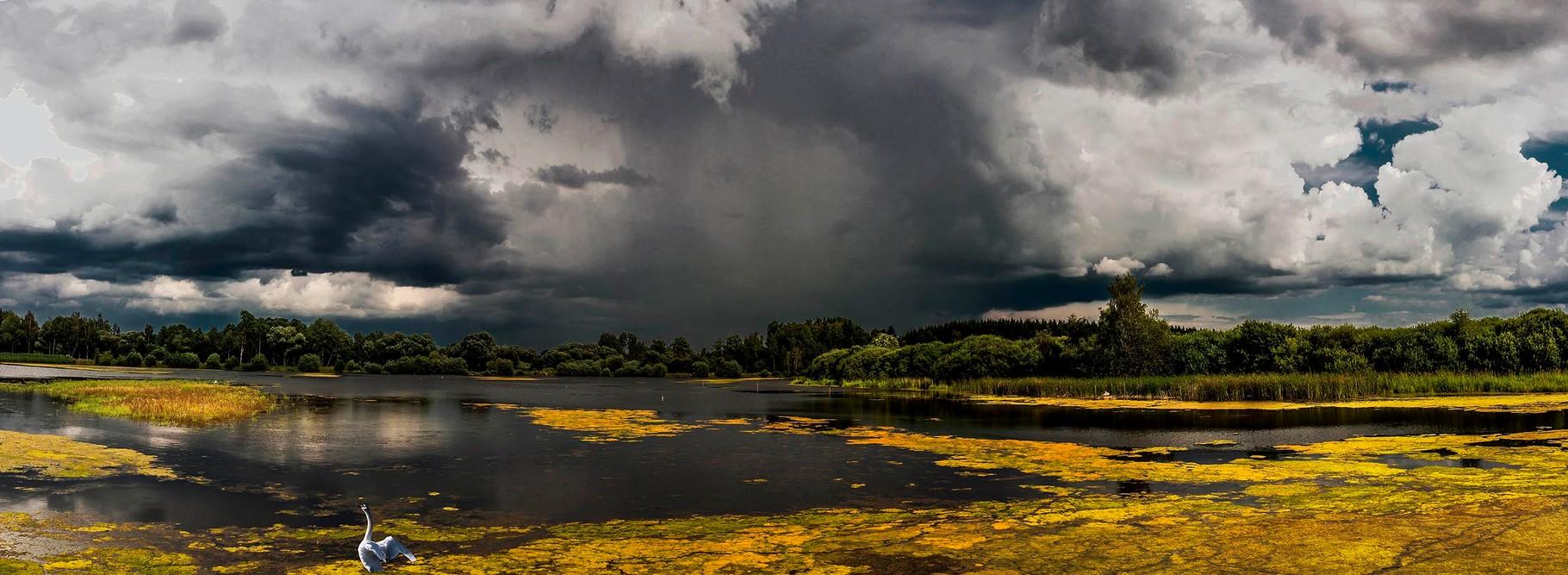 Ottensteiner Seenplatte/NÖ, 2014