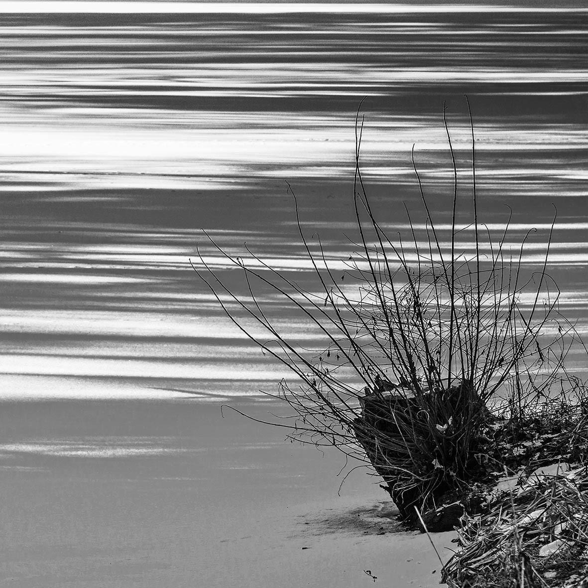 Licht und Schatten am Teich, Teichwanderweg Waldreichs/NÖ