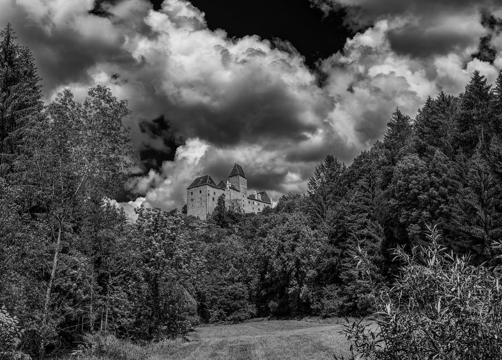 Burg Rastenberg/NÖ, 2016