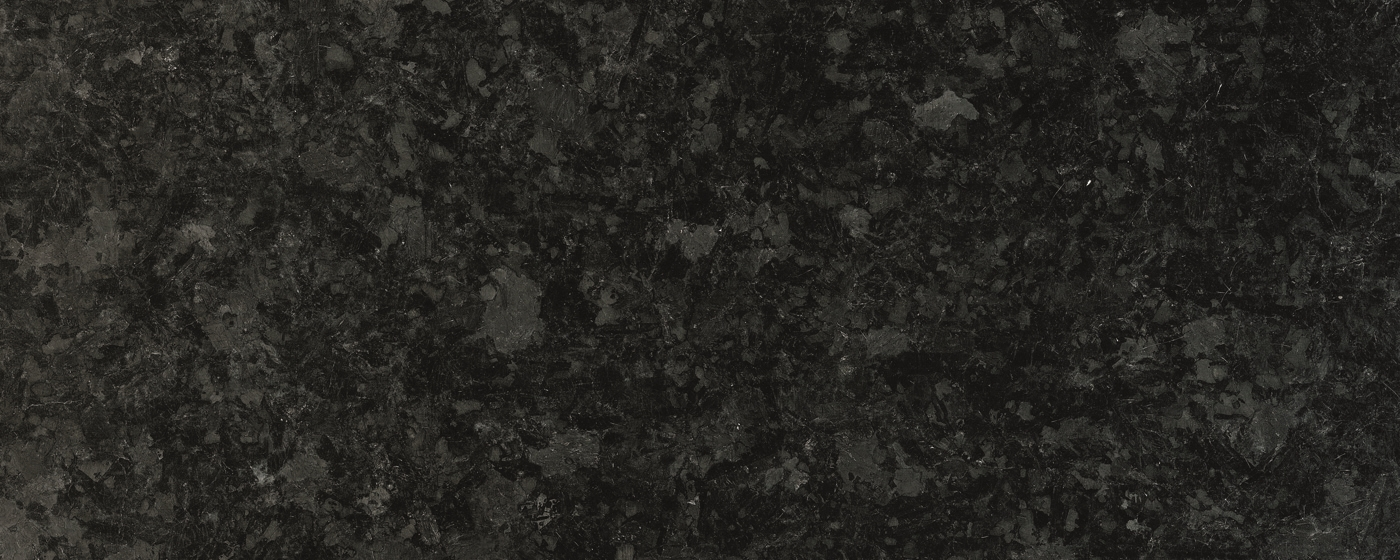Labrador Angola Black