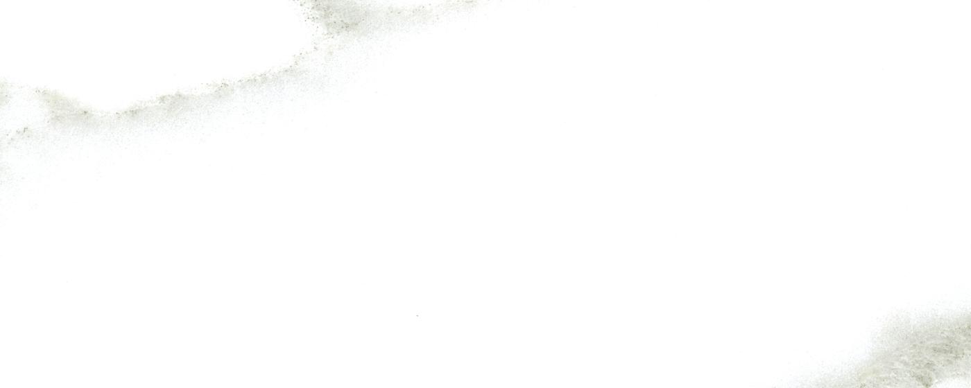 Calacatta Cladia