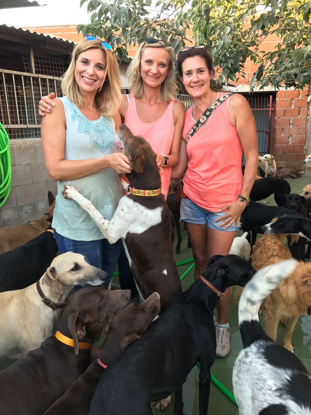 Engagement vor Ort. Edyta und Karolina helfen Hunden über die Tierheimzeit (2018)