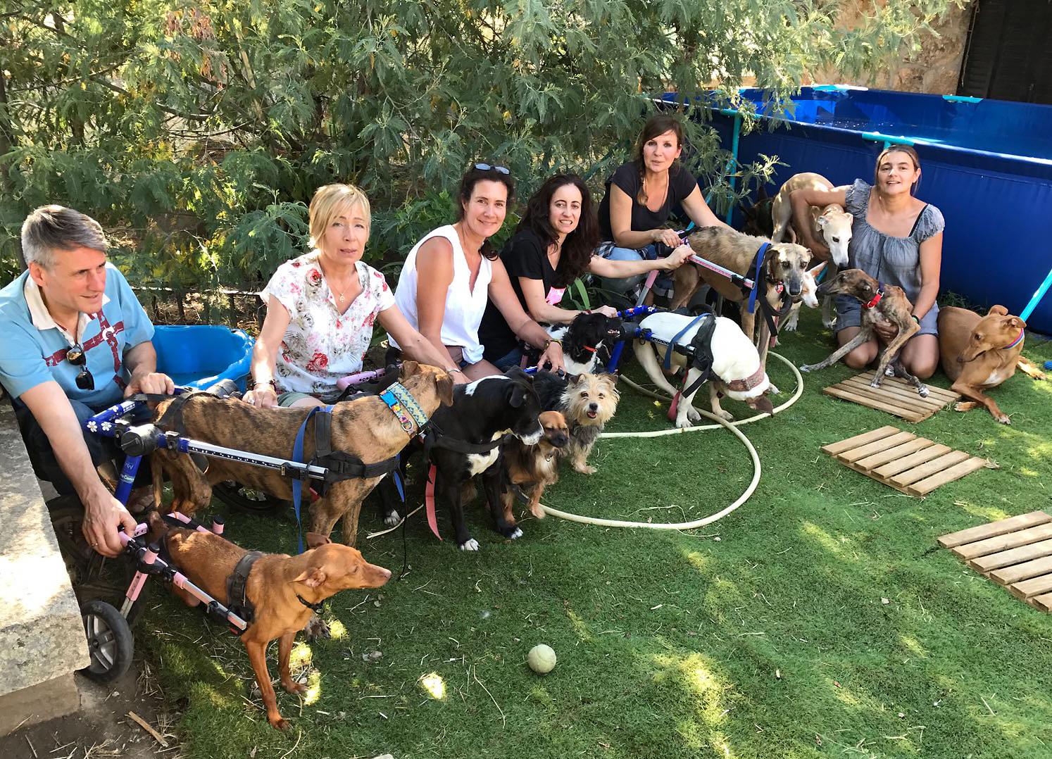 Besuch bei Maria – sie setzt sich in Spanien für behinderte Hunde ein (2018)