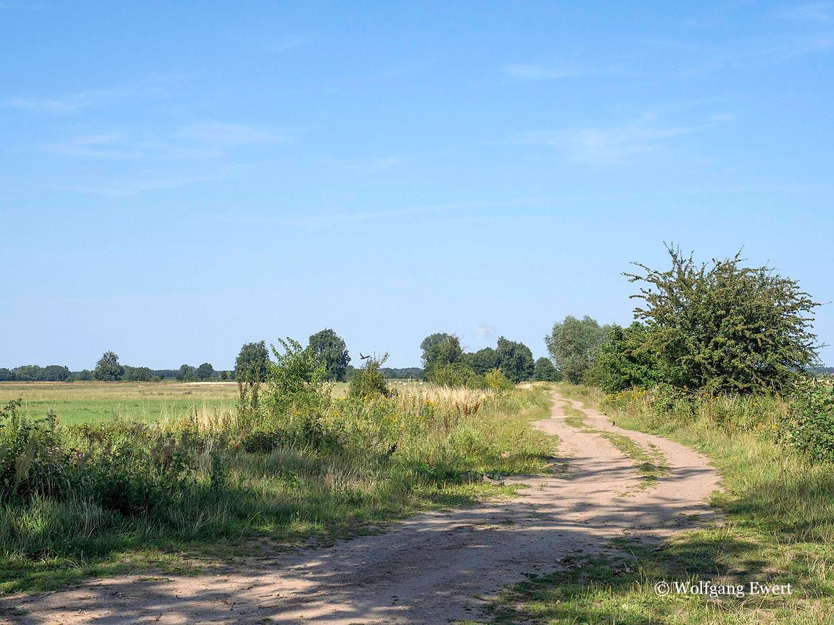 Feldweg                              --                               Foto: W. Ewert