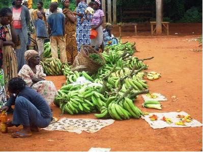 Angossas, le marché des vivres