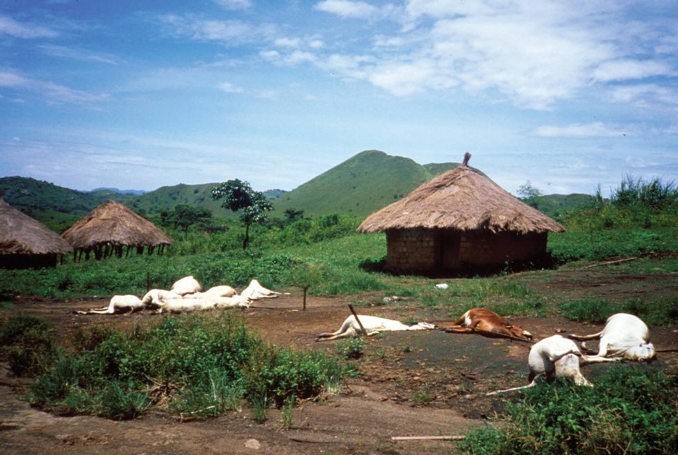 Le Cameroun en 1986 - Osidimbea La Mémoire du Cameroun. Encyclopédie,  annuaire. Histoire des organisations