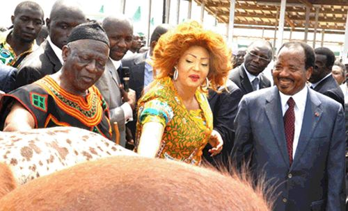 Fru Ndi présente son cheptel à Paul et Chantal Biya au comice