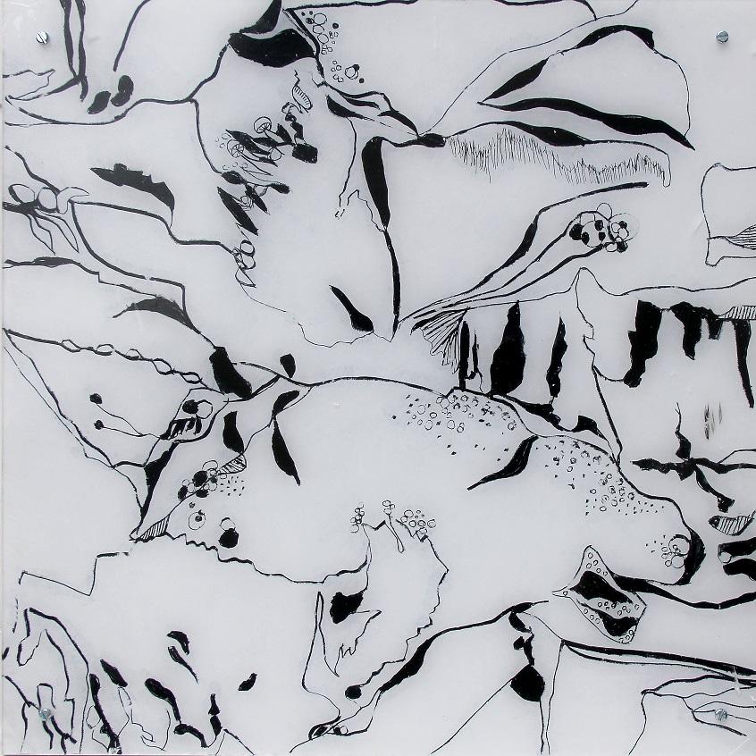 """Fungiismn 3"" Acryl hinter Acrylglas, 50 x 50 cm"