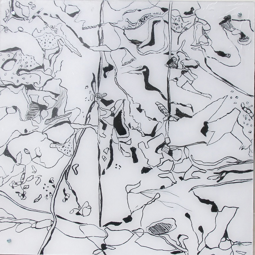 """Fungiismn 2"" Acryl hinter Acrylglas, 50 x 50 cm"