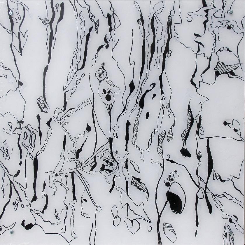 """Fungiismn 4"" Acryl hinter Acrylglas, 50 x 50 cm"