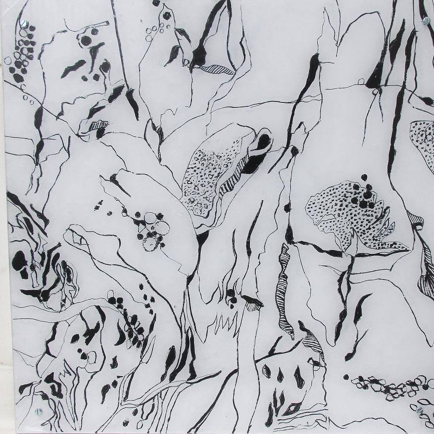 """Fungiismn 1"" Acryl hinter Acrylglas, 50 x 50 cm"