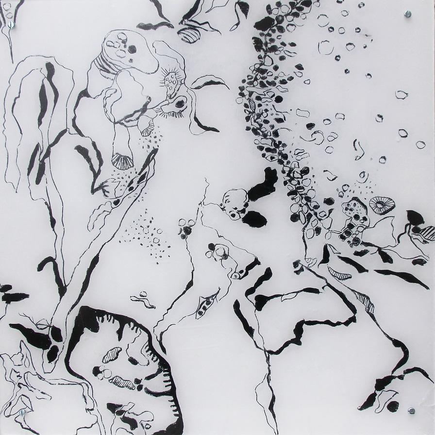 """Fungiismn 5"" Acryl hinter Acrylglas, 50 x 50 cm"