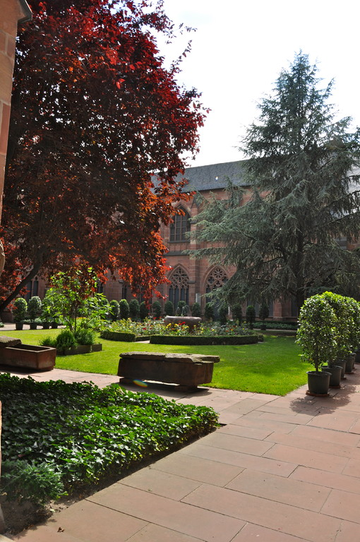 Blick von Kreuzgang im Dom zu Mainz (c) Dombauverein Mainz