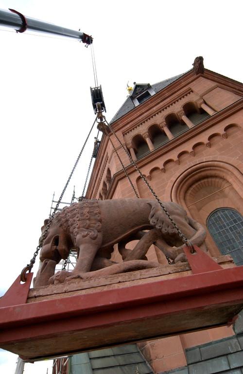 Sanierung der Löwen (c) Sascha Kopp