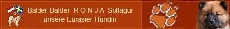 Eurasierhündin RONJA (Mutter unseres B-Wurfs von Arrasino-Austria)