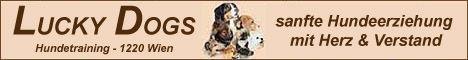 unsere HUNDESCHULE & Welpenschule LUCKY DOGS in 1220 Wien u. 2230 Gänserndorf