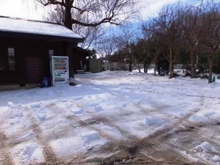 駐車場も、雪