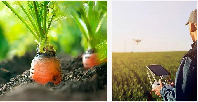 Gérant d'exploitation agricole Bio