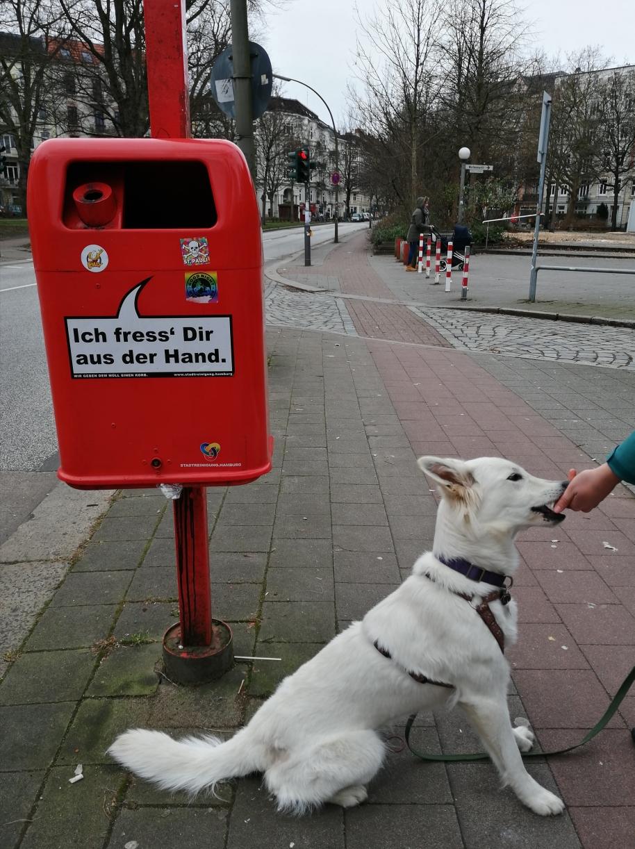 Hamburg ist handzahmer als man denkt