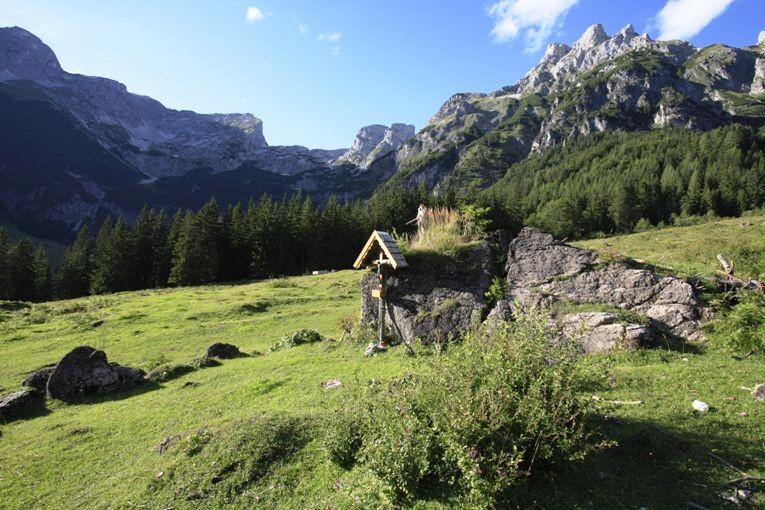 Almgebiet Wengerau am Fuße des Tennengebirges