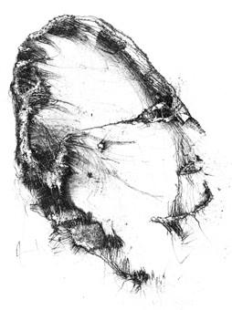 Günter Reich Zeichnung III
