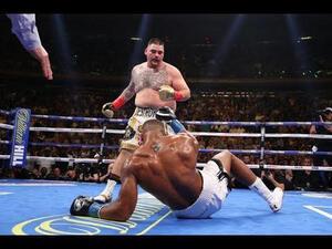 ボクシングで最強はぽっちゃり