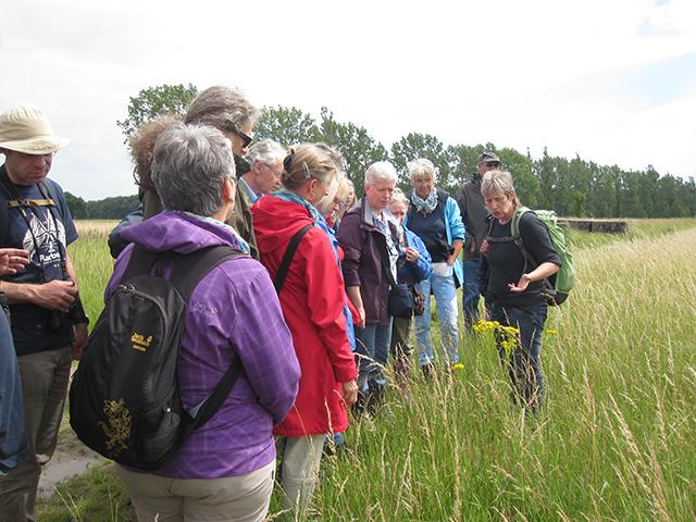 Eva Goclik erklärt die besondere Flora der Herzogsberge bei Cremlingen.