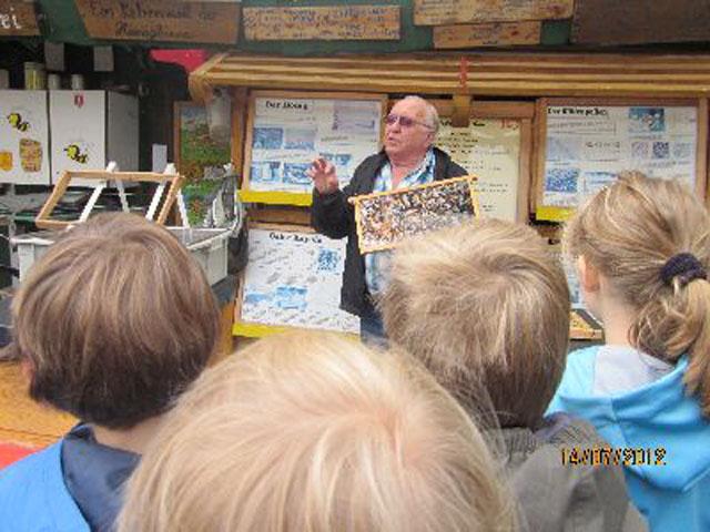 Der Imker Herr Berger erklärt uns auf anschauliche Weise alles Wissenswerte über das Bienenvolk.