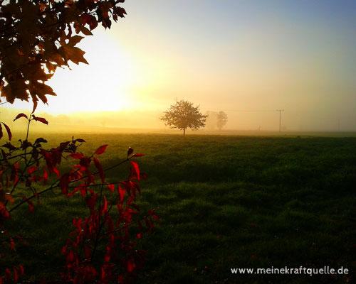 Herbstzauber für die Sinne, Herbstmagie, Kraftquelle, Genießen im Herbst