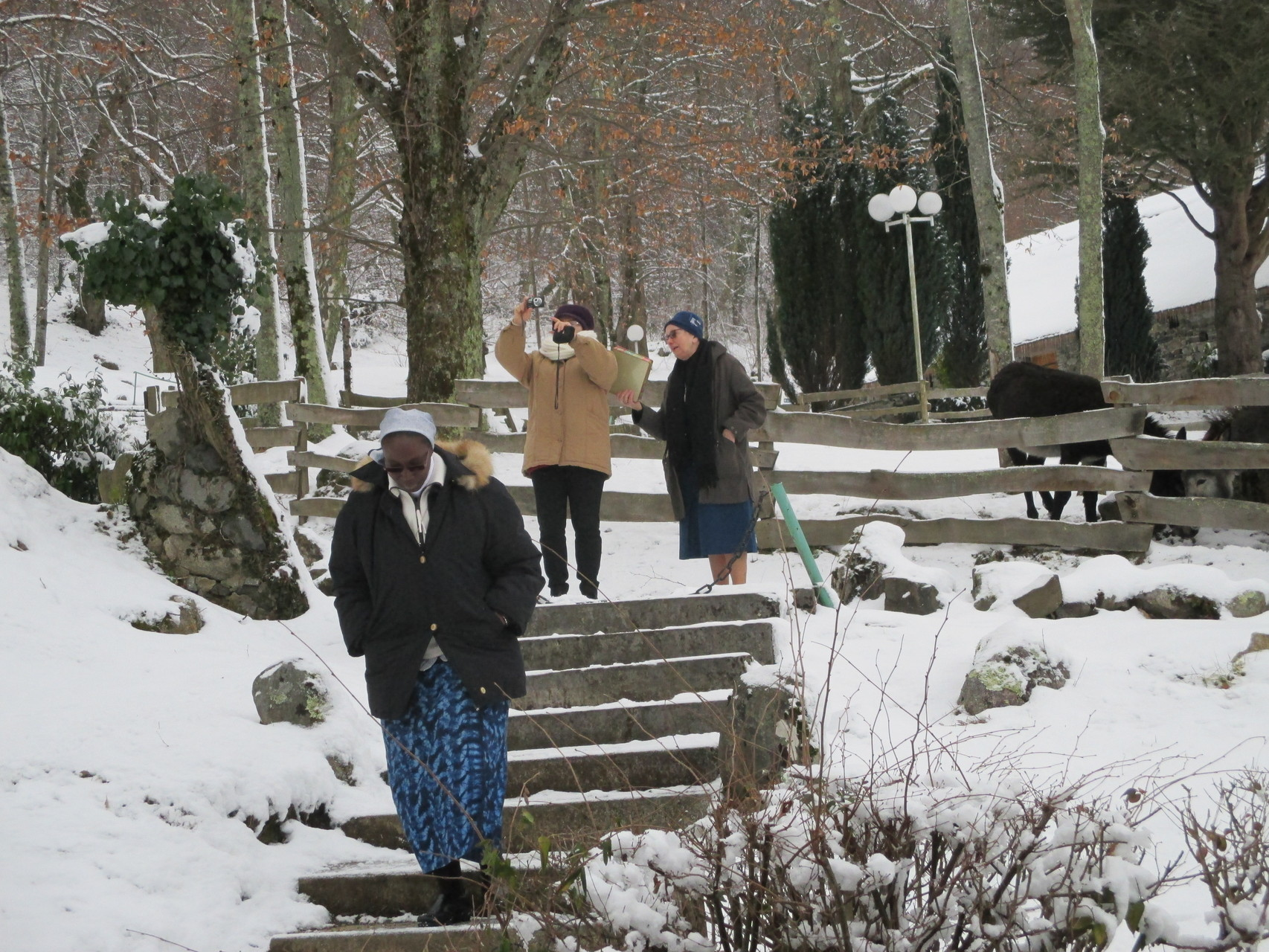 Lourdes Cité