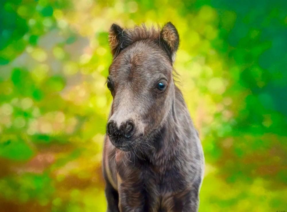 Zur Malerei, einfach auf's Pony klicken.