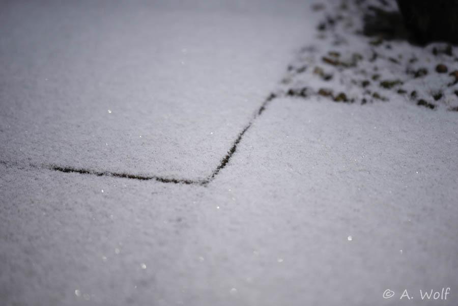 den Boden bedeckt eine Schneedecke