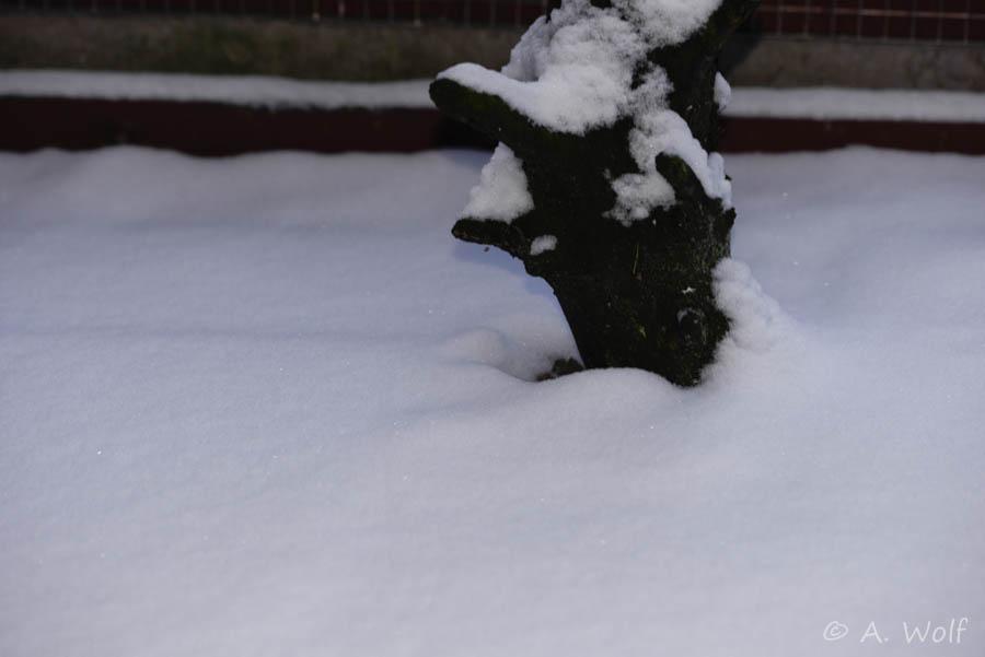 .. hier liegt mittlerweile noch mehr Schnee
