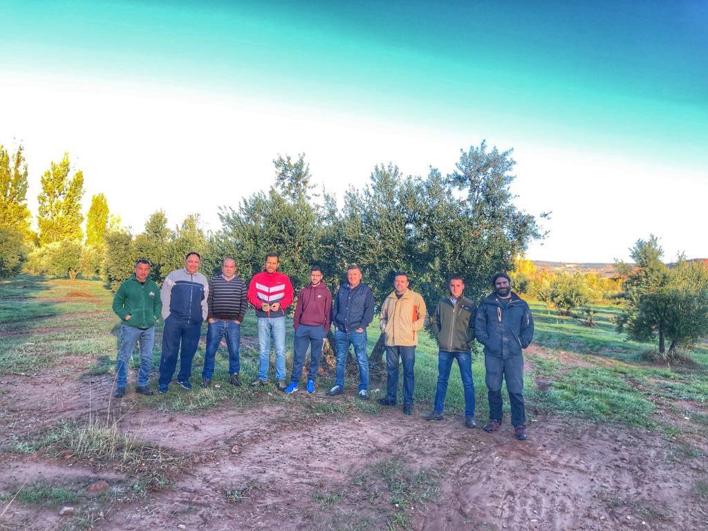 Agricultura Parte Específica, Olivar ALCARAZ