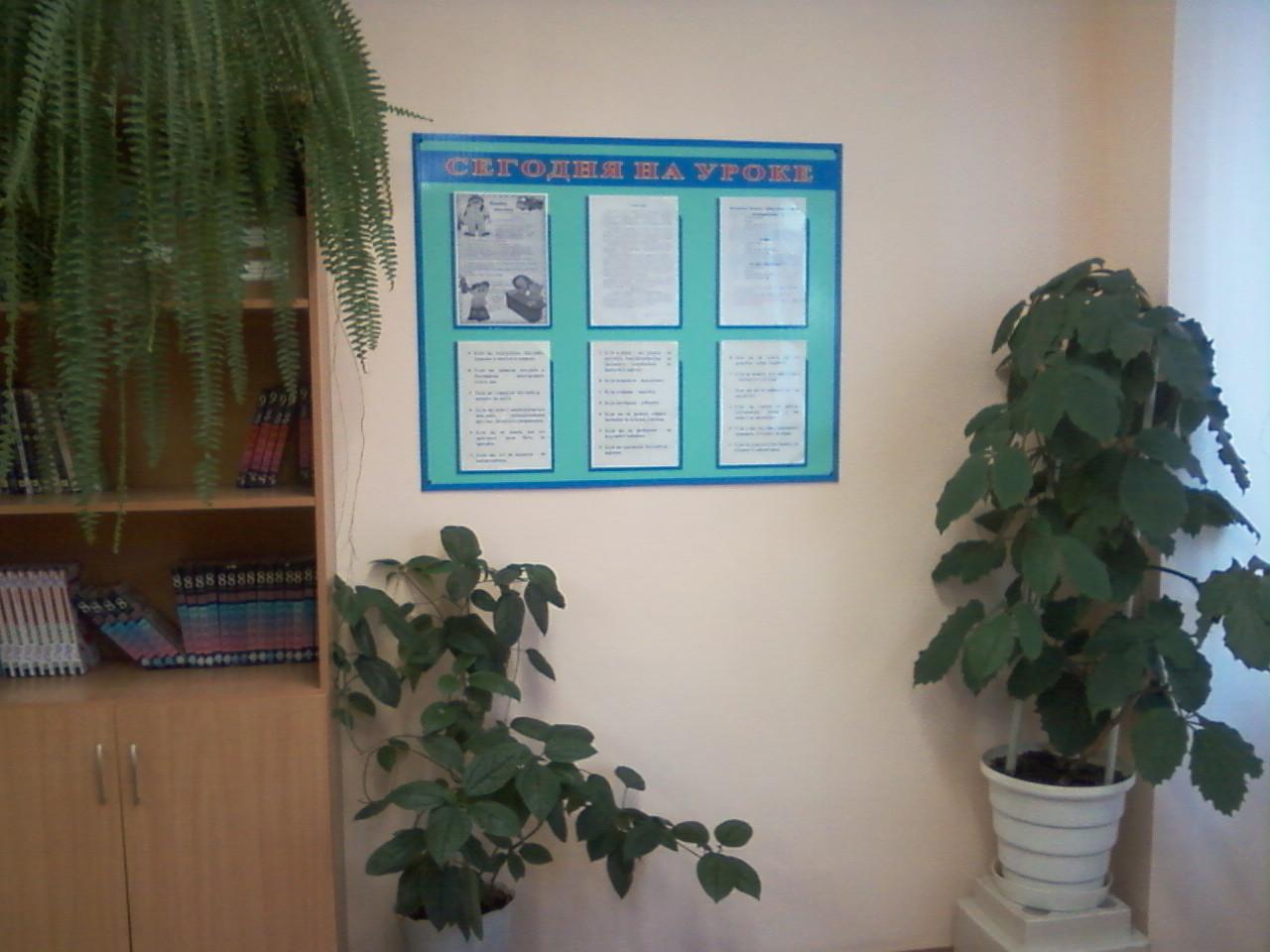 Задняя стена кабинета химии
