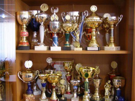 Достижения спортсменов нашей школы
