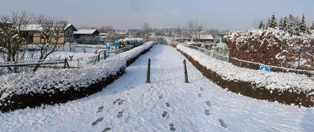 Bilder Anlage Kleingärtnerverein Brühl e.V. im Schnee