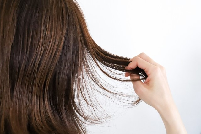 毛髪の基礎知識