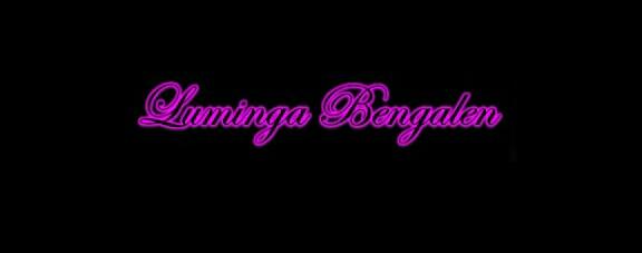 Luminga Bengalen