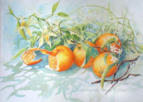 Touzé Oranges et vanille de Polynésie 36x51 Aquarelle