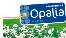 Décorosier Opalia production en pépinières en conteneur