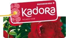 Décorosier Kadora, production en pépinière- DESPRAT - cONTENEUR