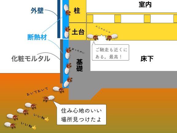 基礎断熱工法の住宅のシロアリ被害の断面図