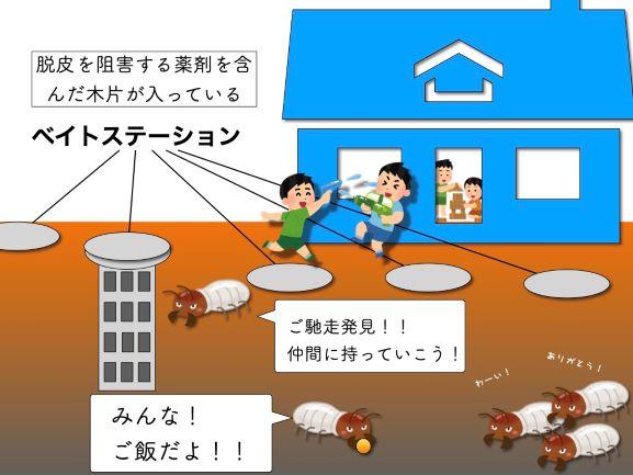 ベイト工法でシロアリ対策した家の断面図