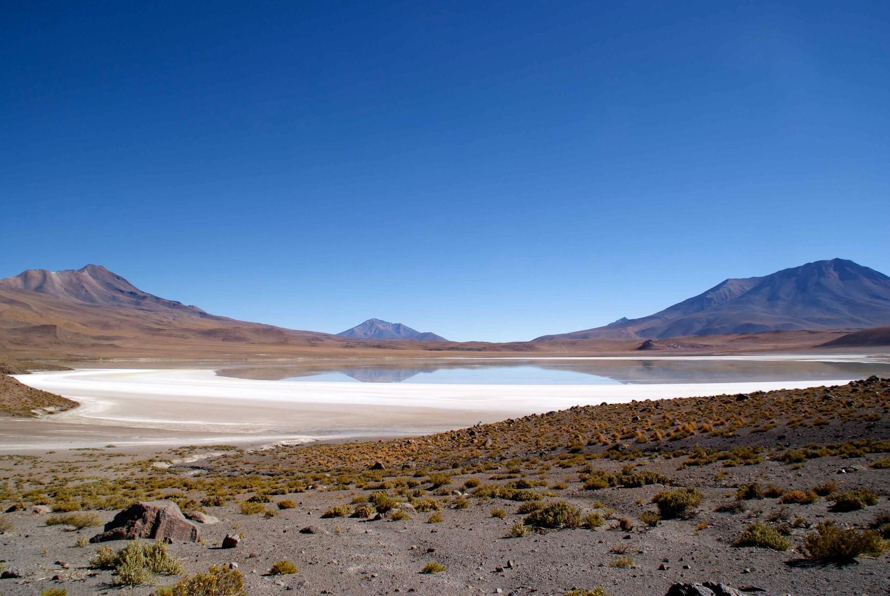 Laguna Hedionda, Sud Lipez Bolivia